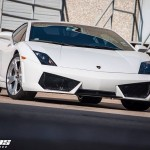Lamborghini Gallardo by Dallas Performance