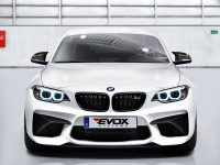 BMW M2 by Alpha N-Performance Comes with 3-Stage Power Kits